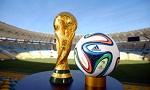 Lên voi xuống chó mùa world cup 2014